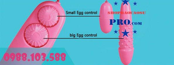 cách sử dụng sextoy trứng rung đôi